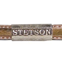 Stetson Angus 10x natural